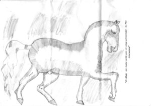 Pferd Plan